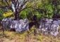 Nekropola sa stećcima - selo Čičevo